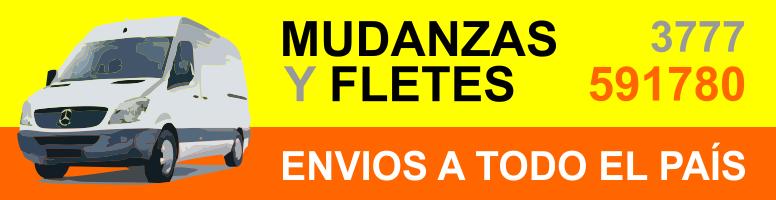 Mudanzas y Fletes
